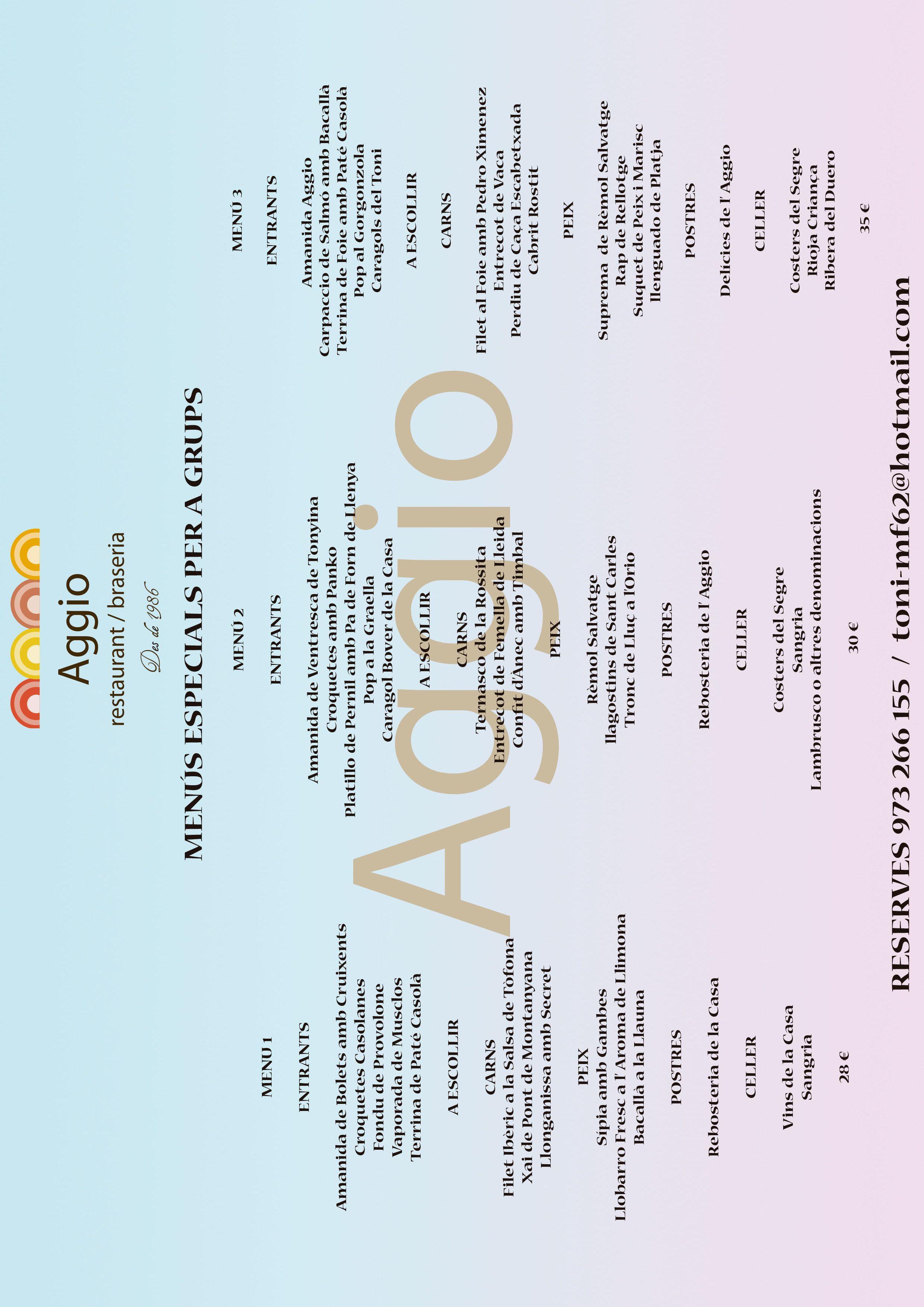 menús grupos Aggio